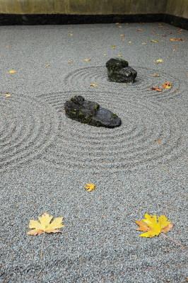 Stones in a Zen Garden