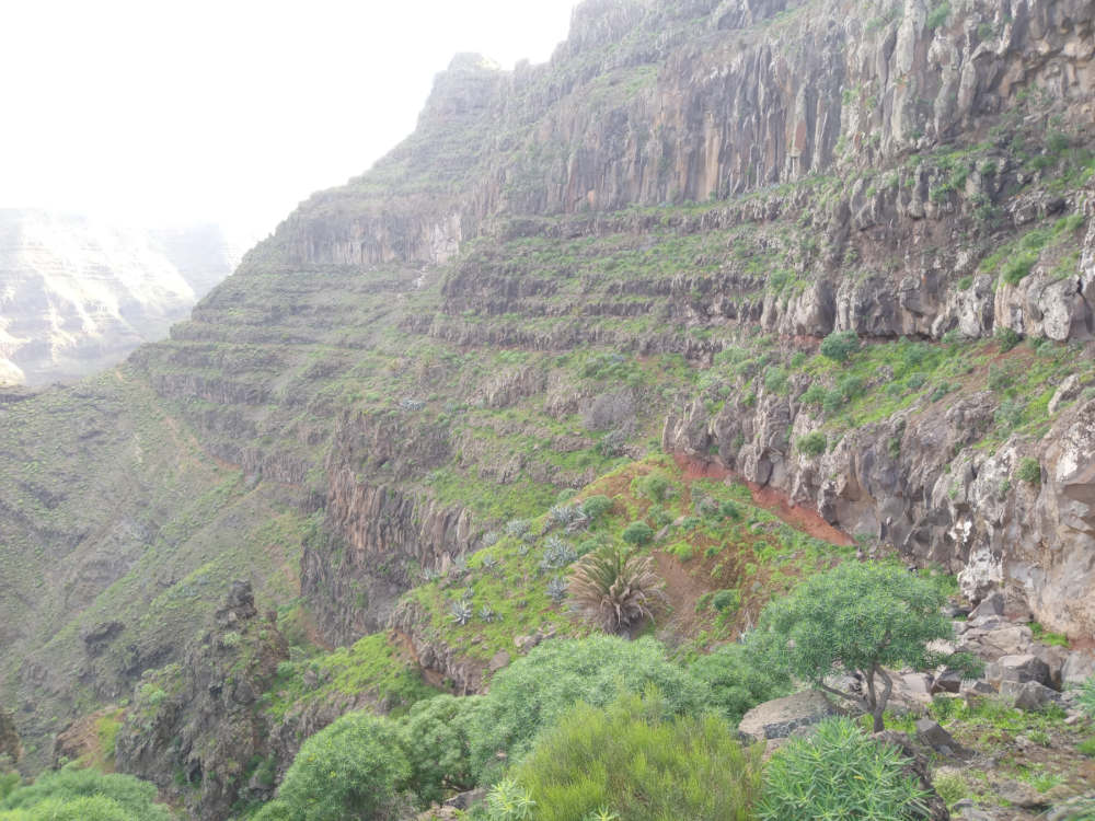 Mountain path on La Gomera.